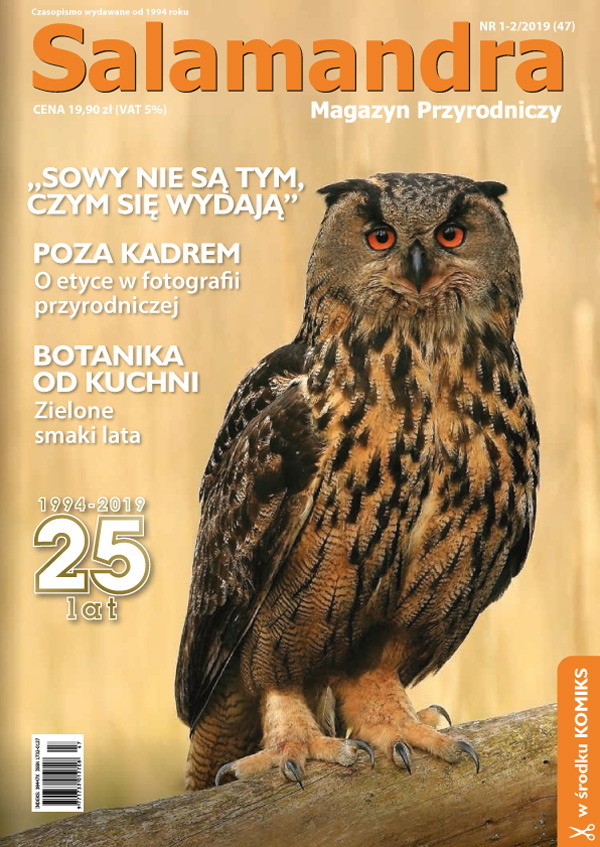 Magazyn Przyrodniczy Salamandra Aktualności
