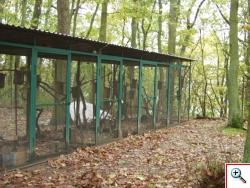 Woliery do hodowli popielic w Stacji Ekologicznej UAM w Jeziorach